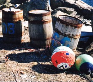 barrels of salted bait