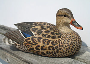Duck carving 1