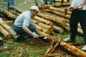 Preparation of logs